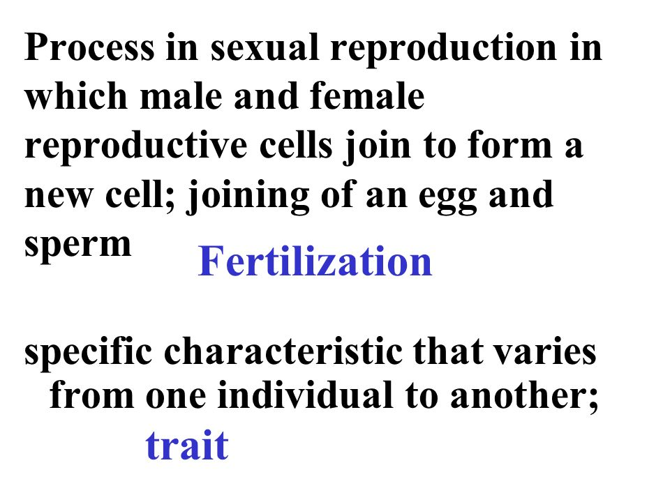 Form of reproduction joining of sperm and cell