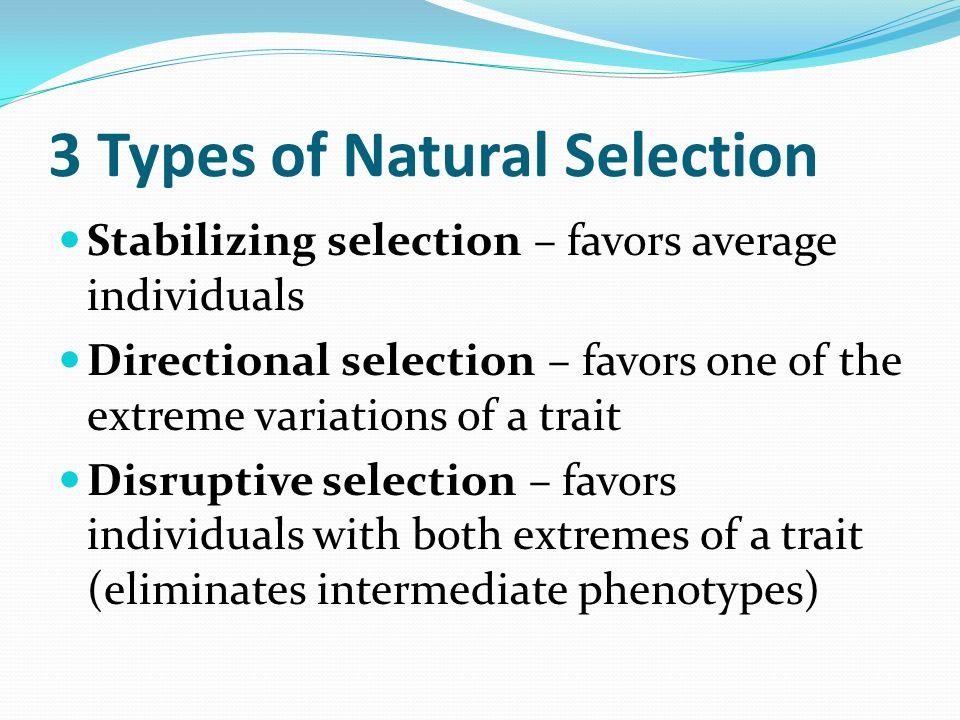Natural Selection That Favors Extreme Phenotypes