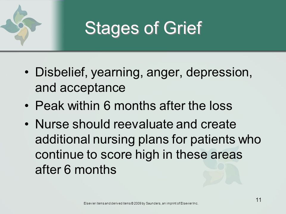 stages of loss and grief pdf