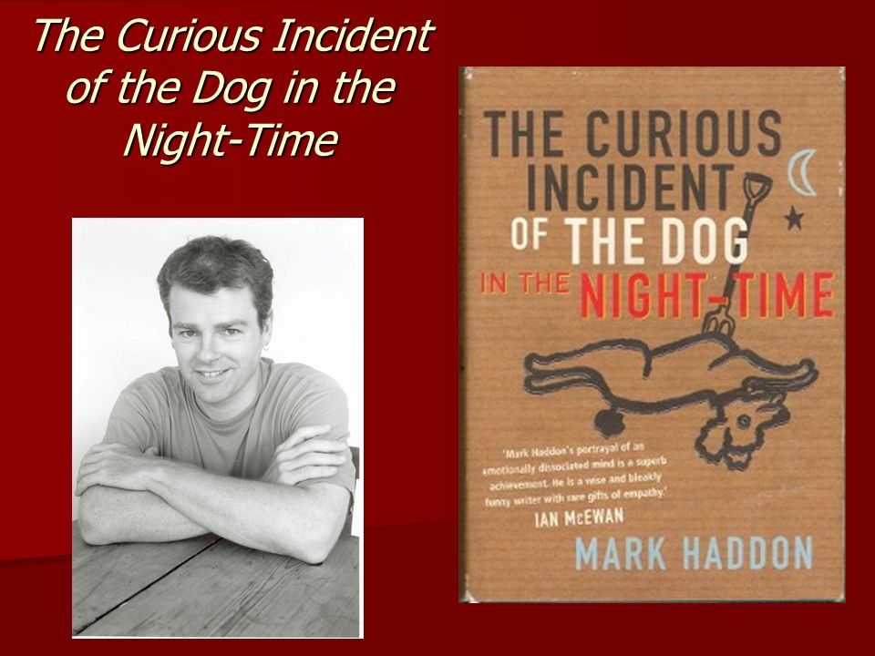 the curious incident of the dog in the night-time thesis statement Boekverslag engels the curious incident of the dog in the night-time the curious incident of the dog in the night-time takes place in the year 1998 in and.