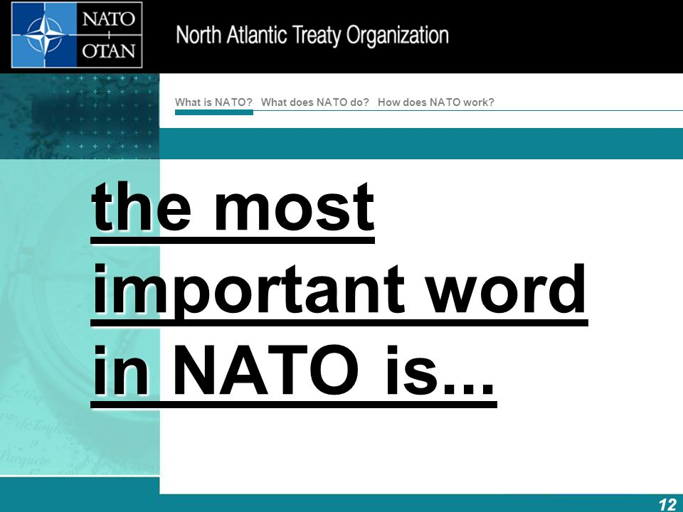 the most important word in NATO is...