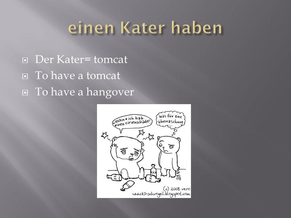 einen Kater haben Der Kater= tomcat To have a tomcat
