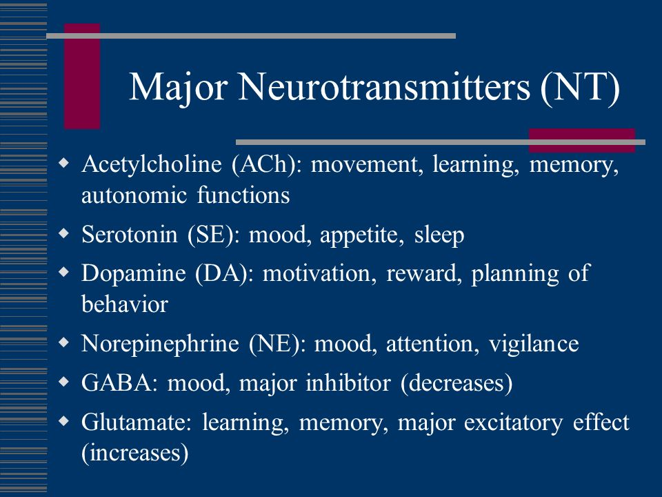 major neurotransmitter essay The tools you need to write a quality essay or regulation of dopamine plays a major part in neurons containing neurotransmitter dopamine are located in.