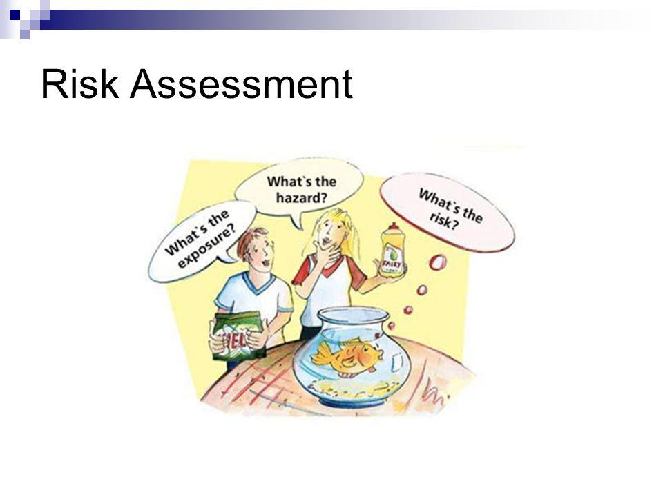 Risk Assessment Ppt Video Online Download