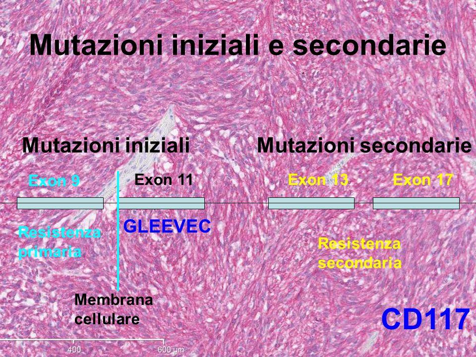 Mutazioni iniziali e secondarie