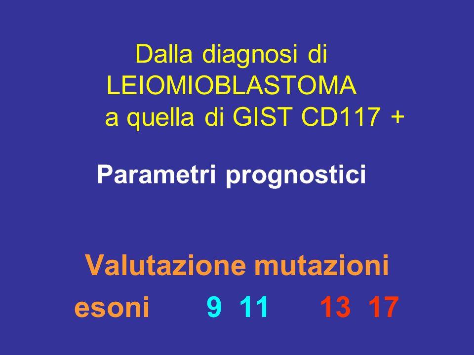 Dalla diagnosi di LEIOMIOBLASTOMA a quella di GIST CD117 +