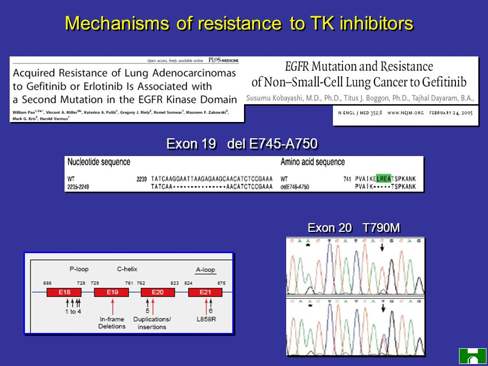 Mechanisms of resistance to TK inhibitors