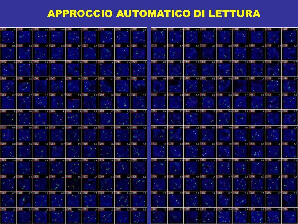 APPROCCIO AUTOMATICO DI LETTURA