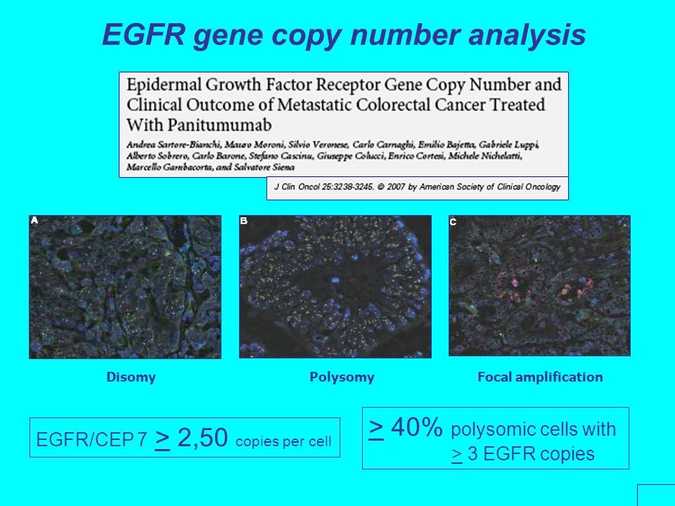 EGFR gene copy number analysis