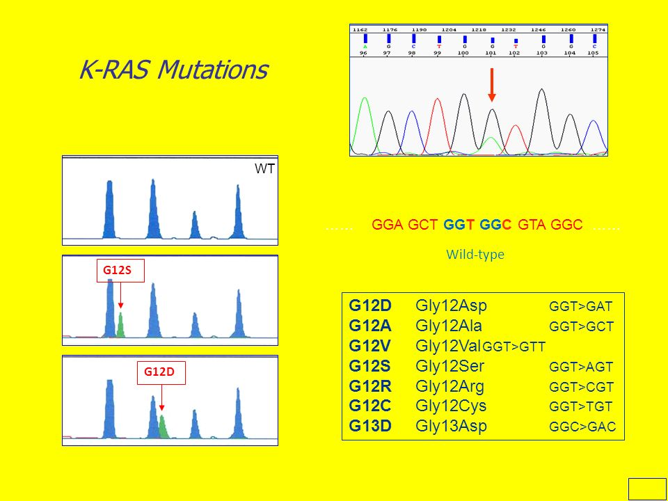 K-RAS Mutations G12D Gly12Asp GGT>GAT G12A Gly12Ala GGT>GCT
