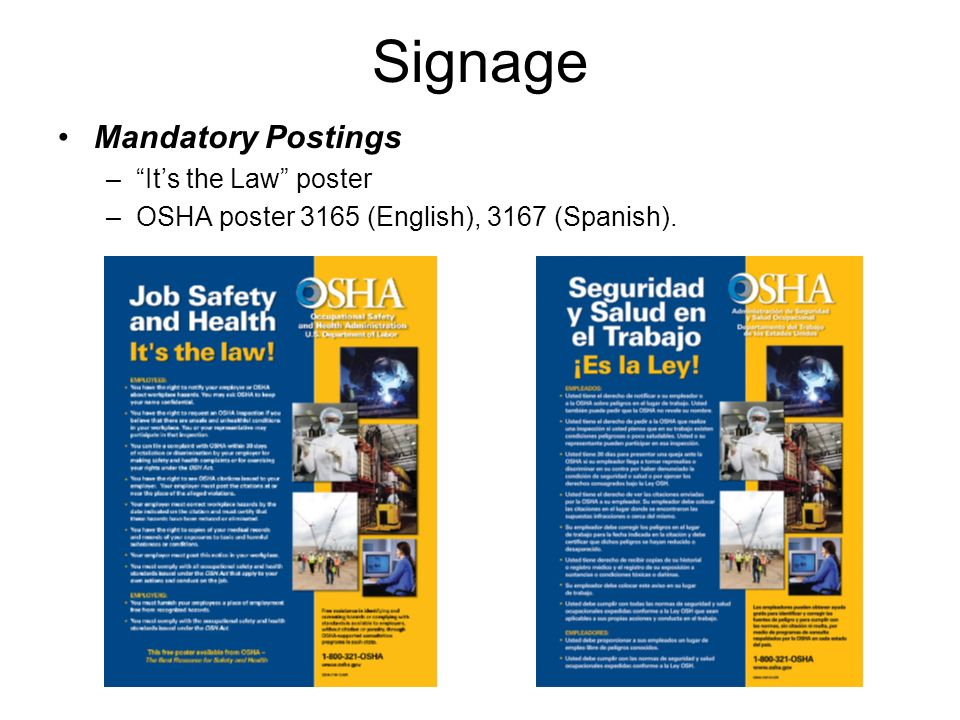 Signage Mandatory Postings It's the Law poster