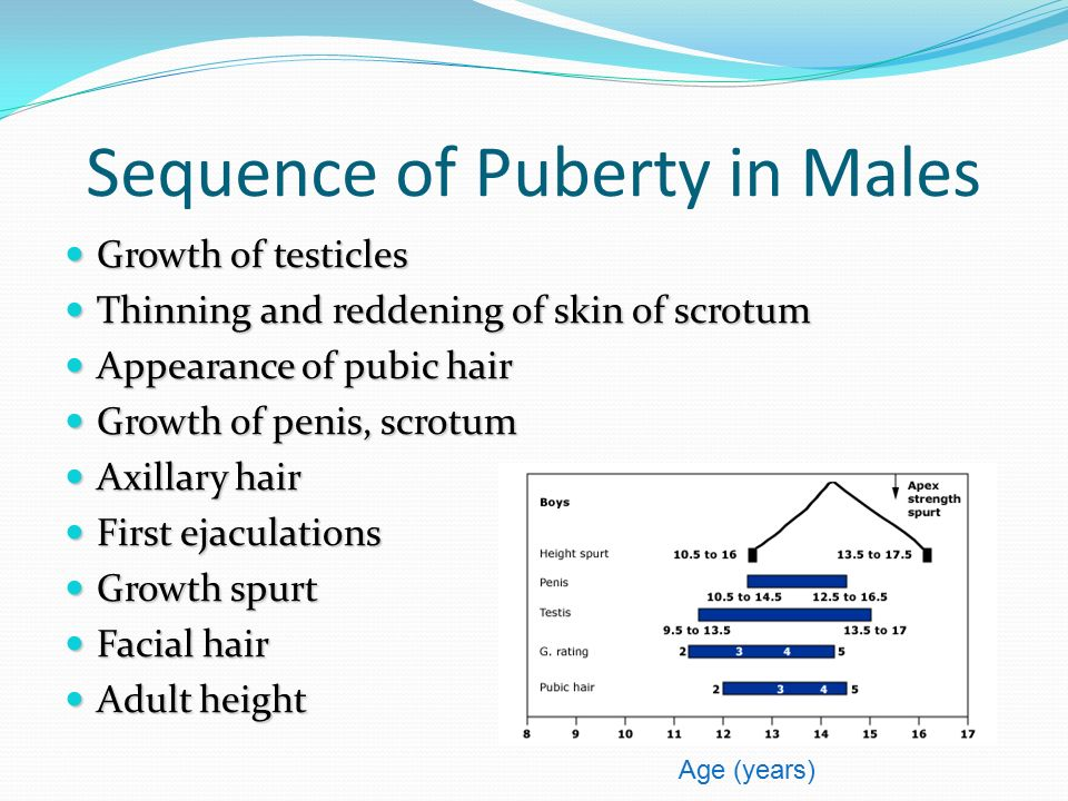 Sequence of Puberty in Males