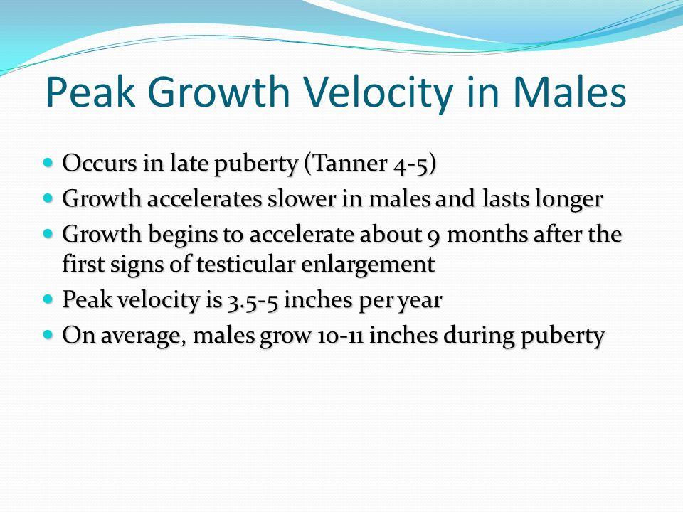 Peak Growth Velocity in Males