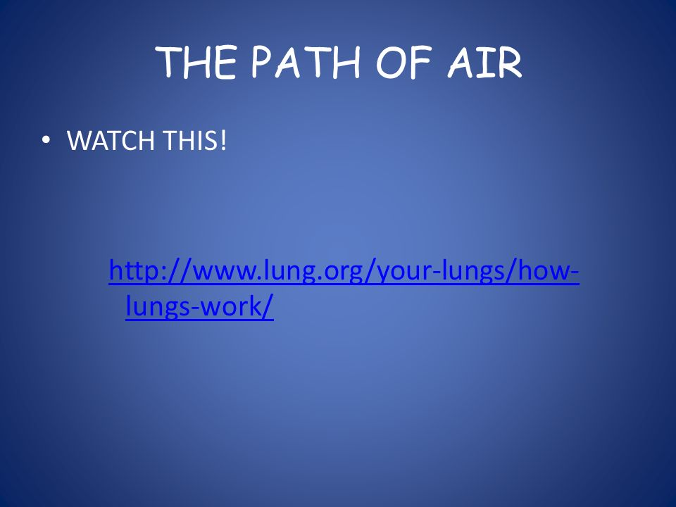 THE PATH OF AIR WATCH THIS!