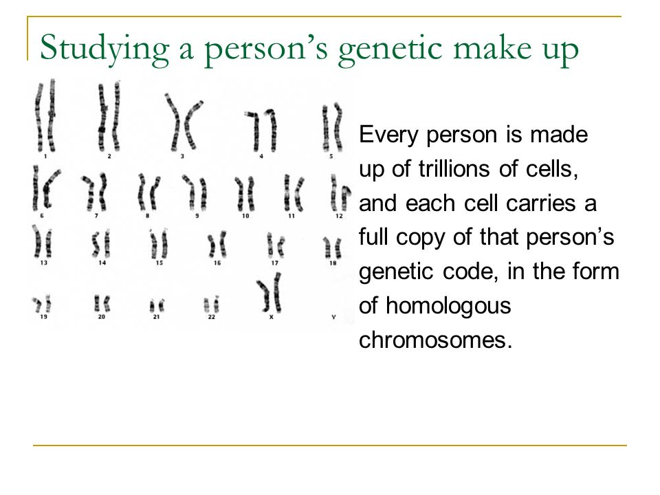 Studying a person's genetic make up