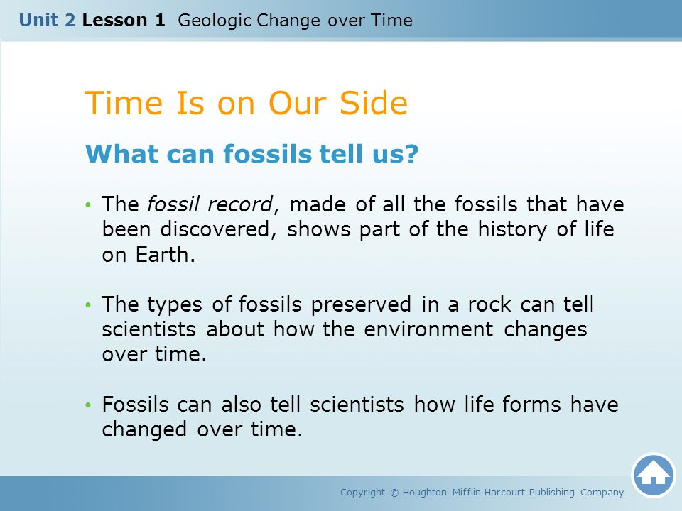 a history of life on earth and the fossil records Dave hone: the fossil record has its limitations, but by  thus affects how we as  palaeontologists can investigate the life of these ancient worlds  earth's  geological processes are mostly slow, but the tectonic plates do move  of a  limited amount of rocks to dig in on studies of the evolution of fossil groups.
