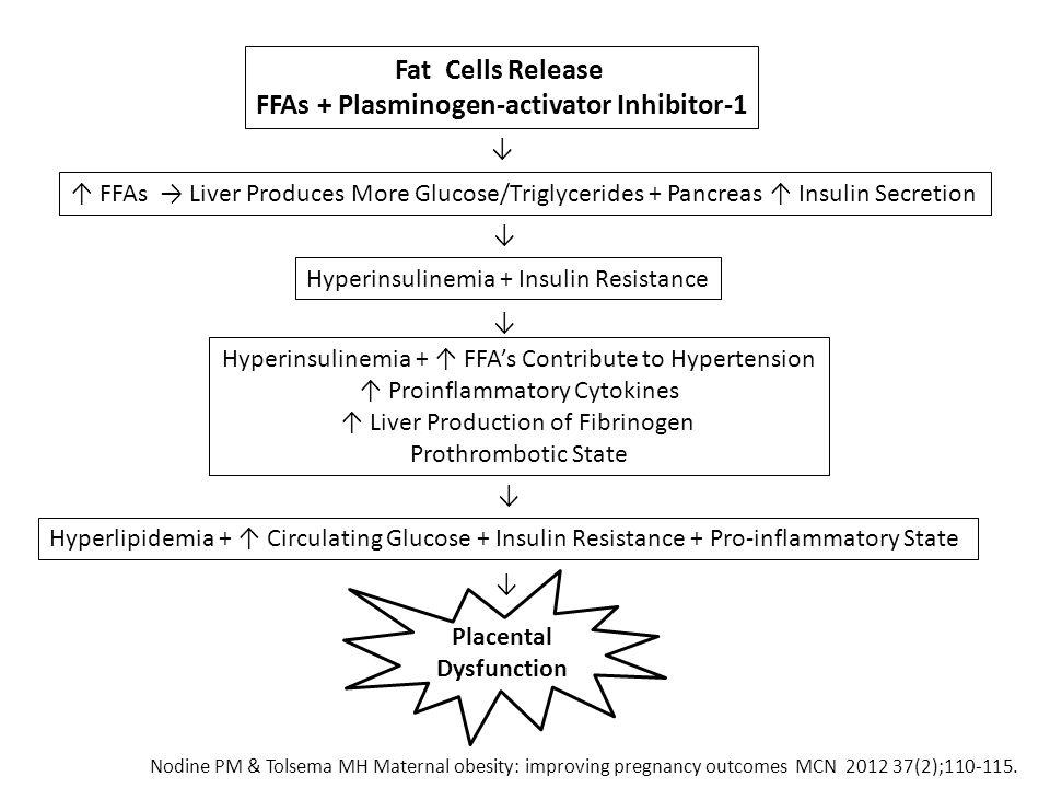 FFAs + Plasminogen-activator Inhibitor-1 Placental Dysfunction