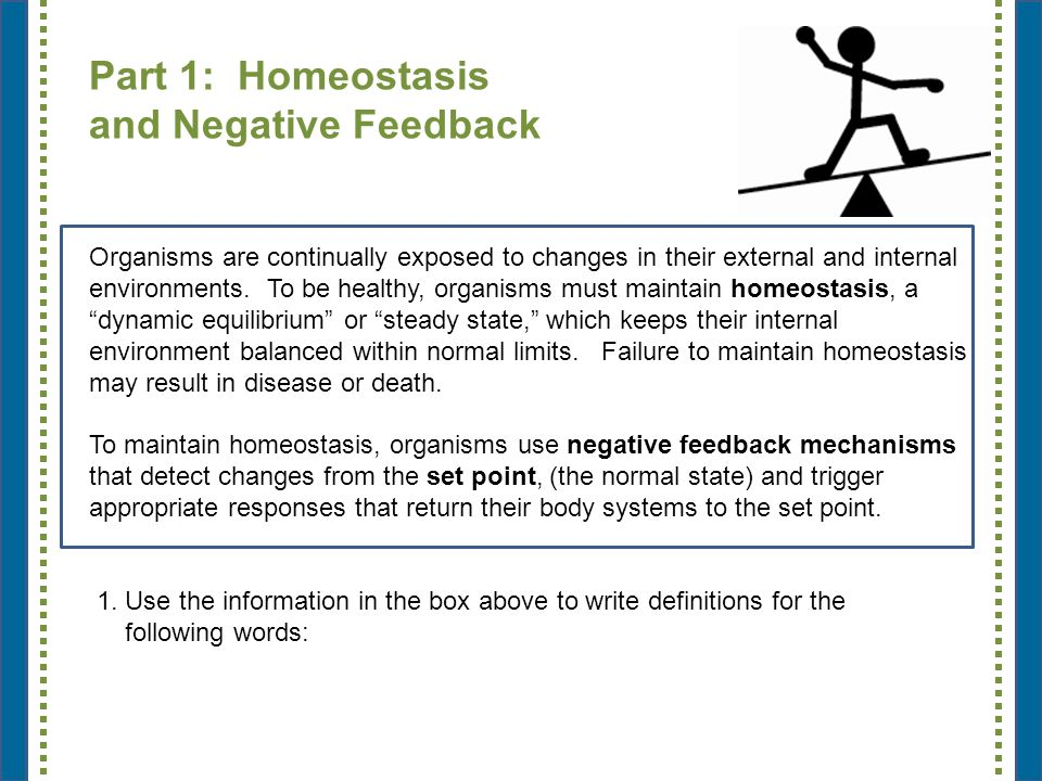 essay on homeostasis in the human body We will write a custom essay sample on the importance of homeostasis in maintaining healthy functioning of the body specifically for you for.