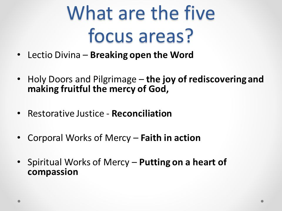 What are the five focus areas