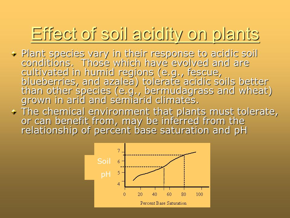 The effect of soil ph on