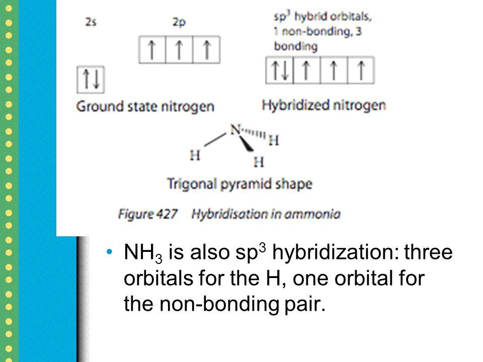 Hybridization. - ppt video online download
