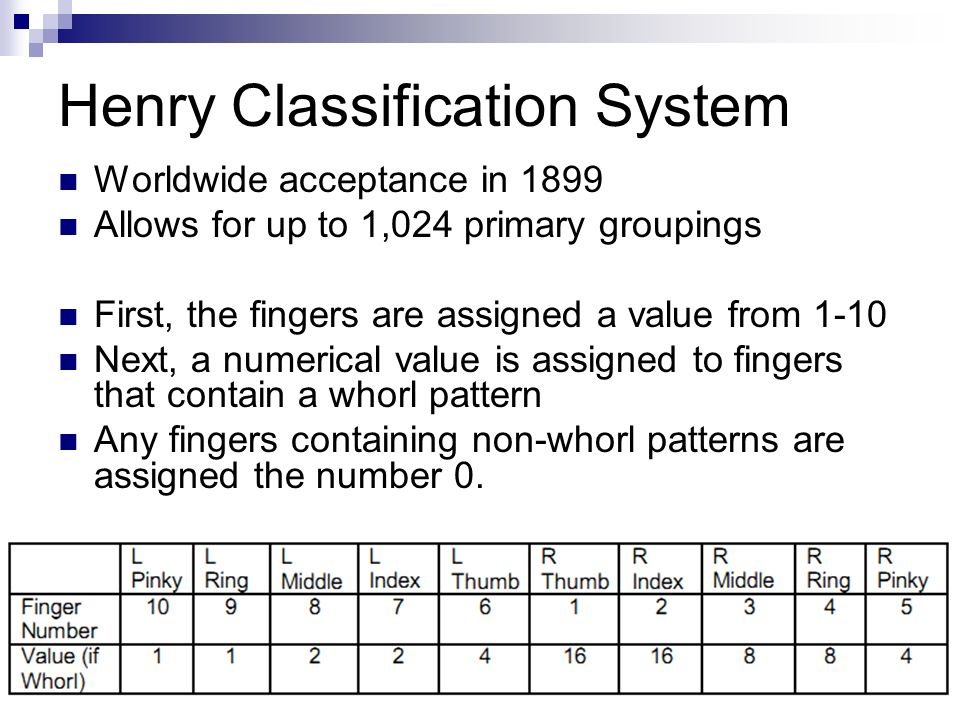 Henry+Classification+System.jpg