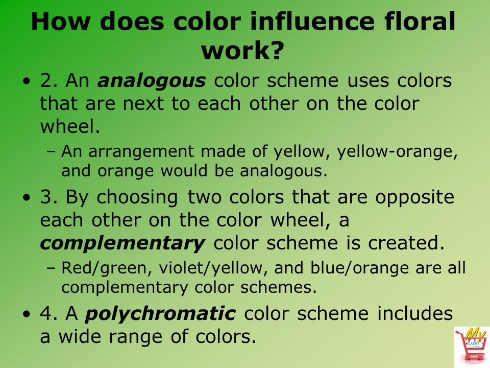 Horticulture science lesson 58 understanding the design How does the colour wheel work