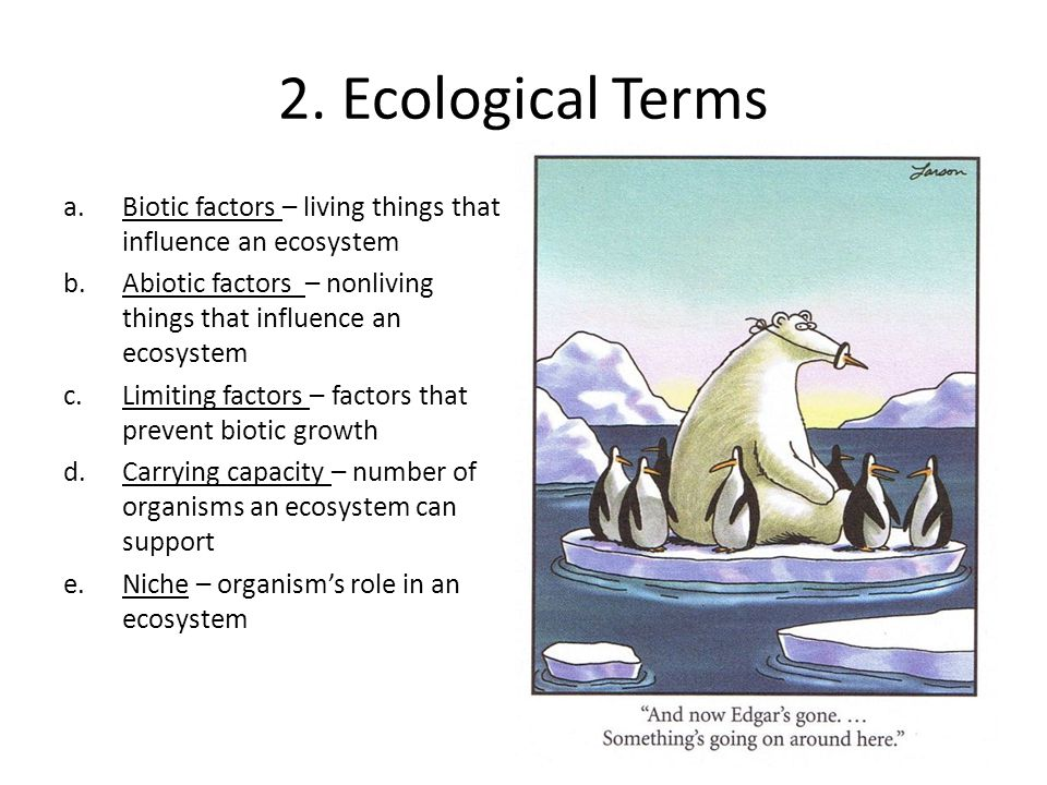 Operating within the ecological model