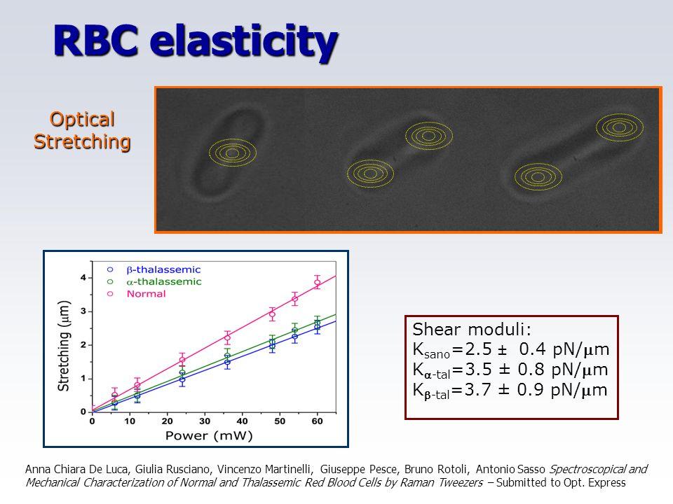 RBC elasticity Optical Stretching Singola trappola Allineamento