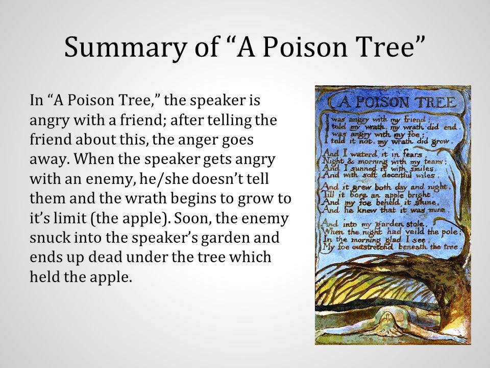 poison tree summary Free a poison tree papers, essays, and research papers.