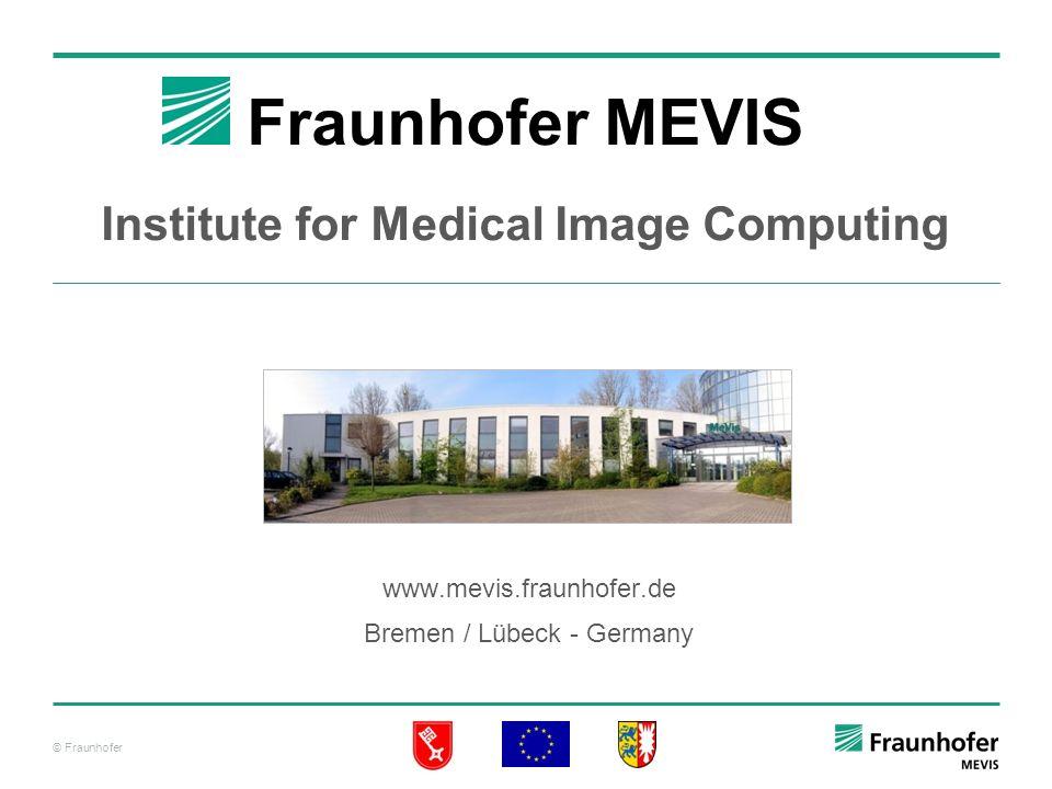 Fraunhofer MEVIS Institute for Medical Image Computing