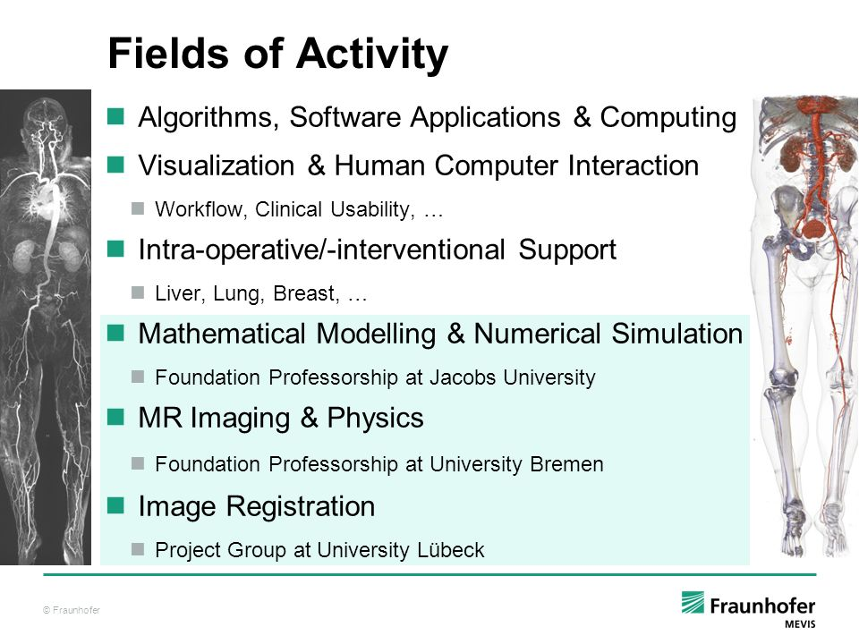 Fields of Activity Algorithms, Software Applications & Computing