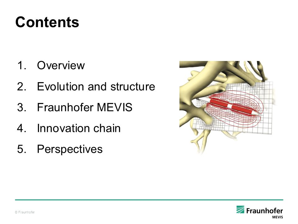 Contents Overview Evolution and structure Fraunhofer MEVIS