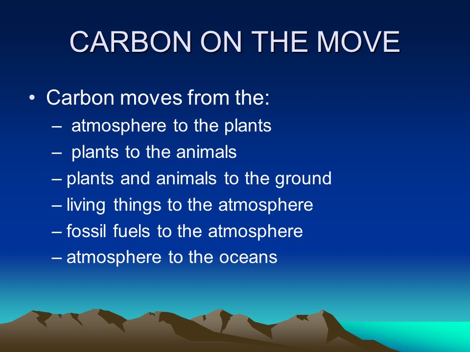 CARBON ON THE MOVE Carbon moves from the: atmosphere to the plants