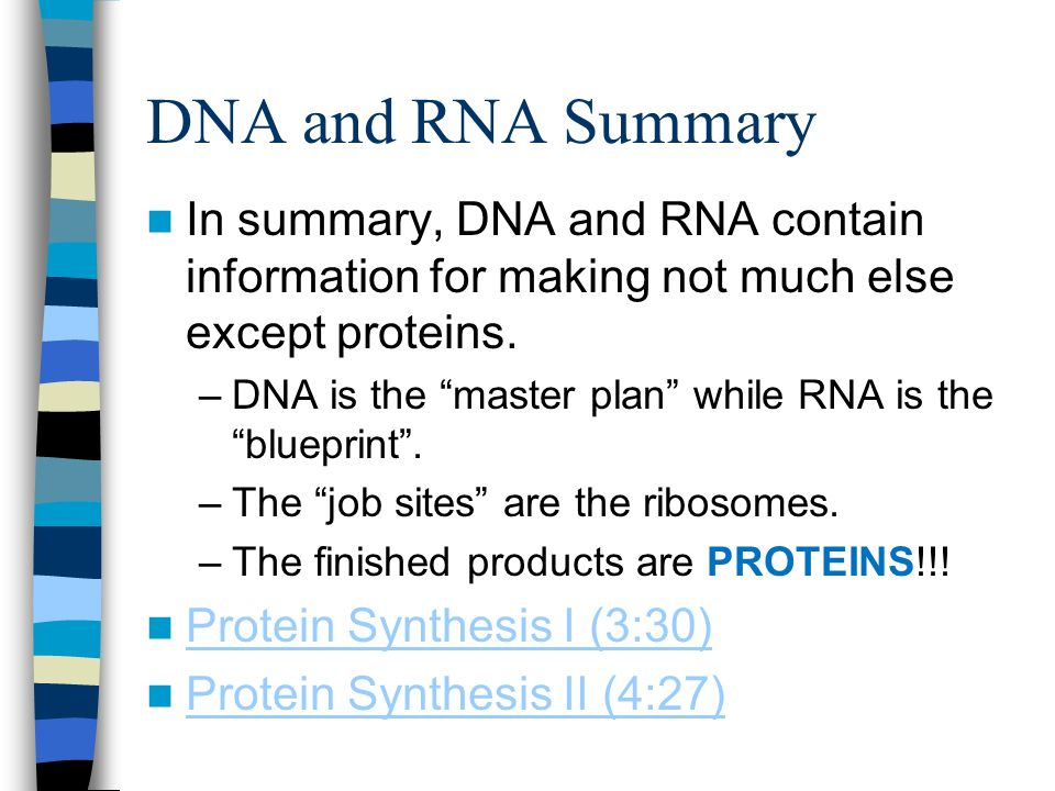 Dna rna and protein synthesis ppt video online download 23 dna and rna malvernweather Choice Image