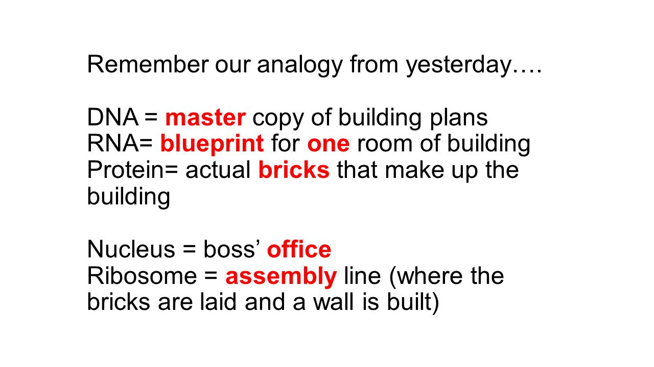 Happy friday bellwork ppt download remember our analogy from yesterday malvernweather Gallery