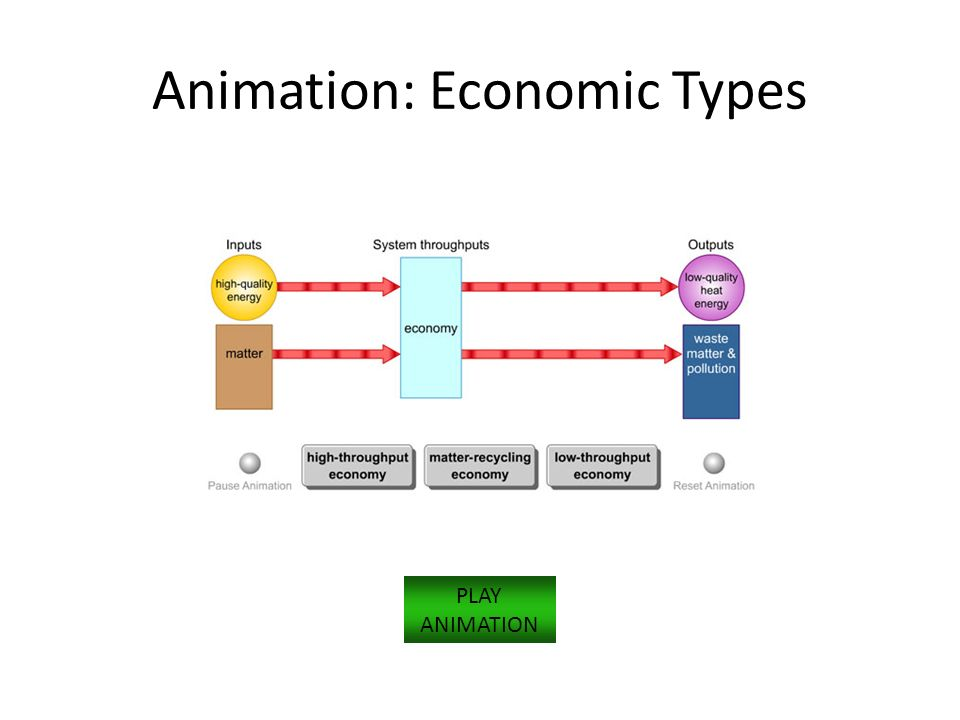 Animation: Economic Types