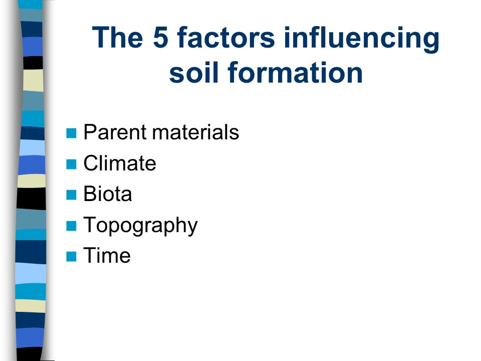 Essay topics due by noon on friday 21 may ppt video for Soil research impact factor