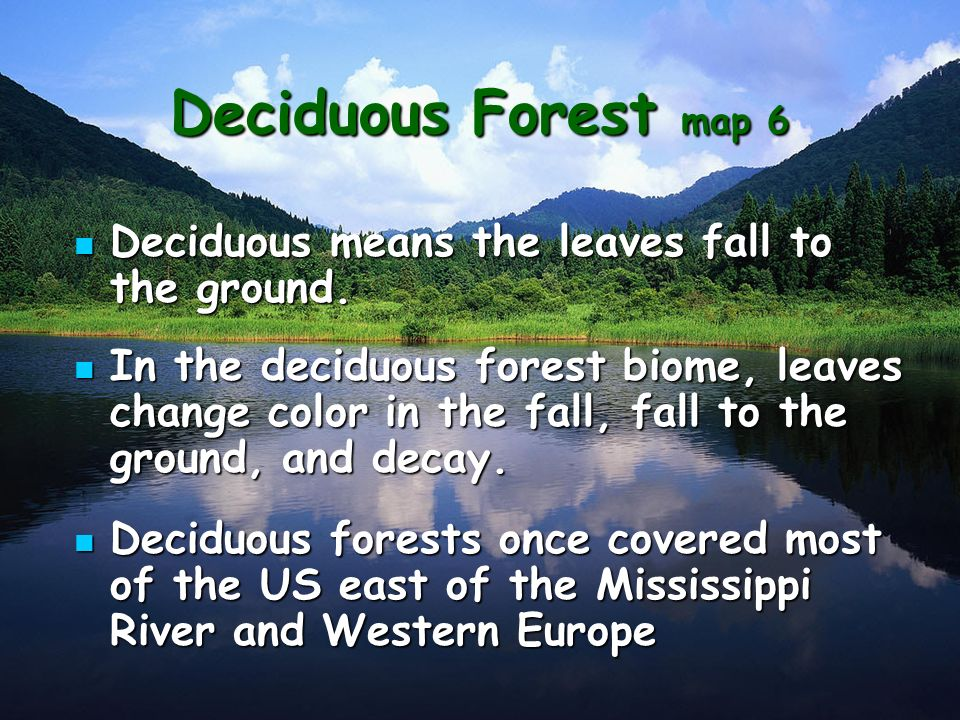 Deciduous Forest Map 6 Deciduous Means The Leaves Fall To The Ground
