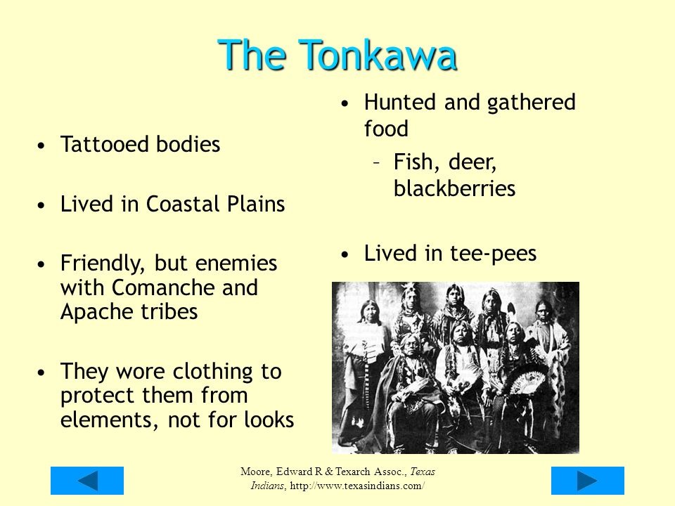 Native Americans from Texas - ppt video online download