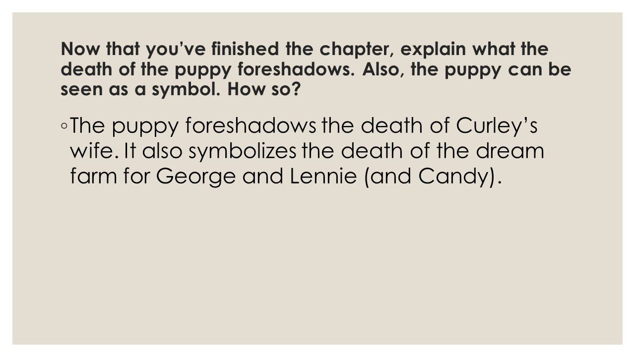 Now that you've finished the chapter, explain what the death of the puppy foreshadows. Also, the puppy can be seen as a symbol. How so