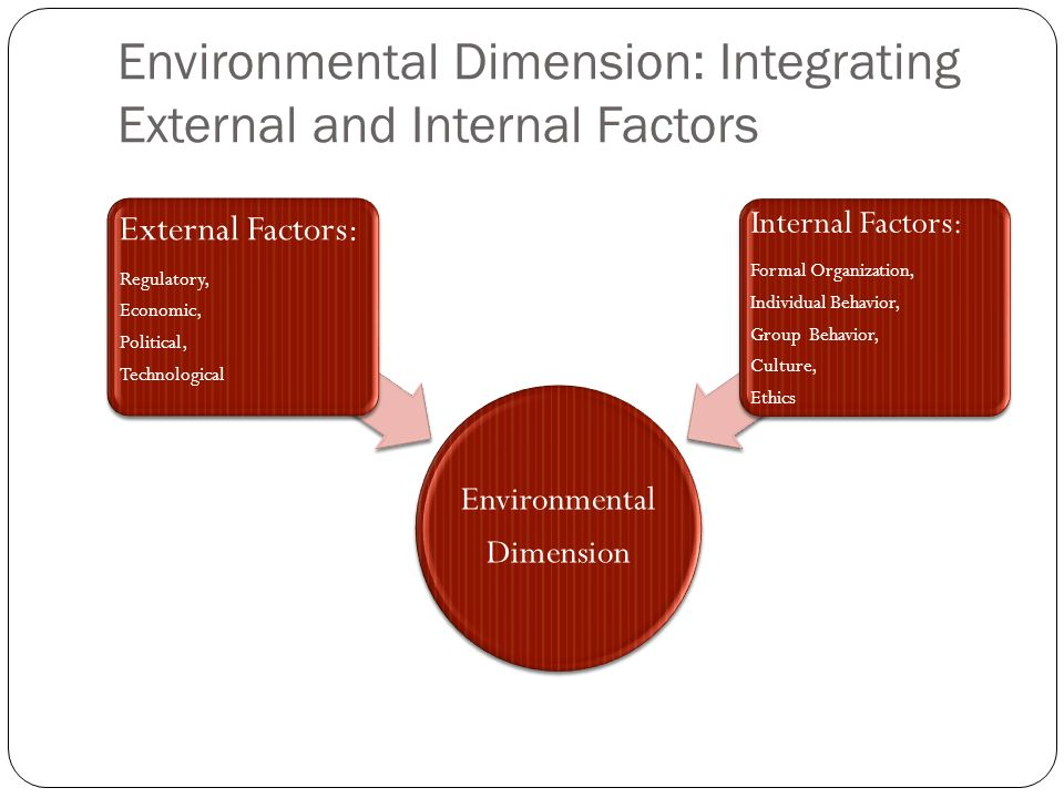 7 Factors Determining the Internal Environment of a Business