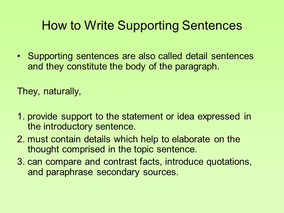 What types of paragraphs comprise the body of an essay