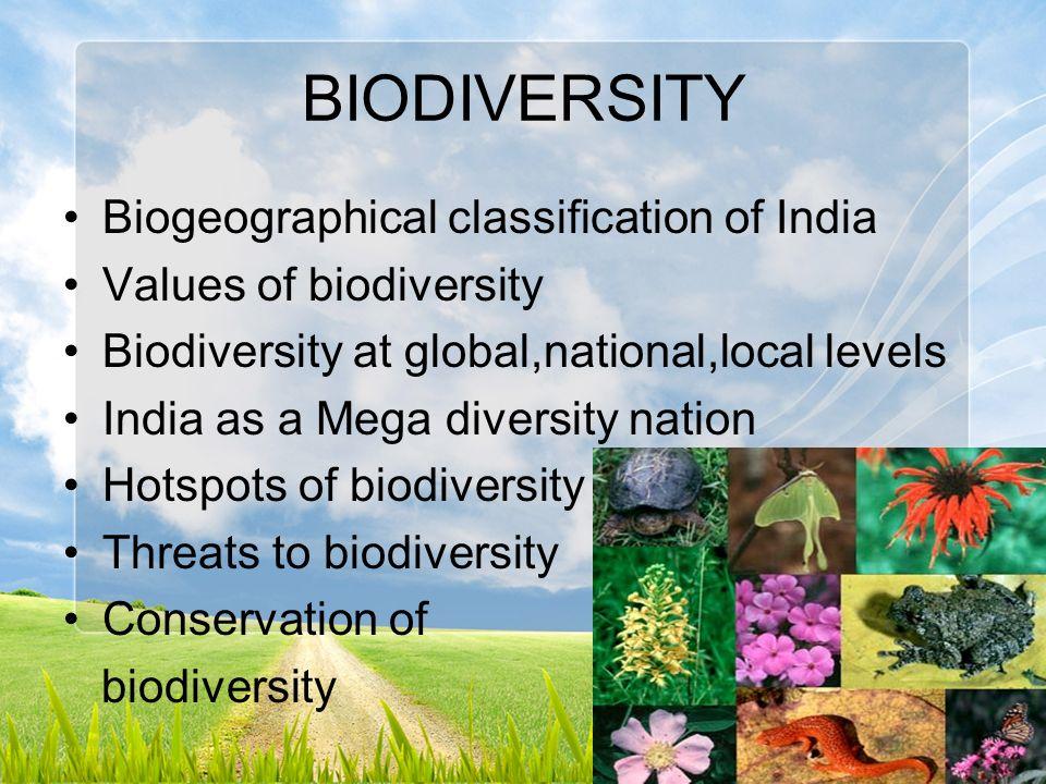 classification and marine biodiversity Components of biodiversity  components of biodiversity | biodiversity classification  (coniferous forest, prairie, tundra, marine intertidal).