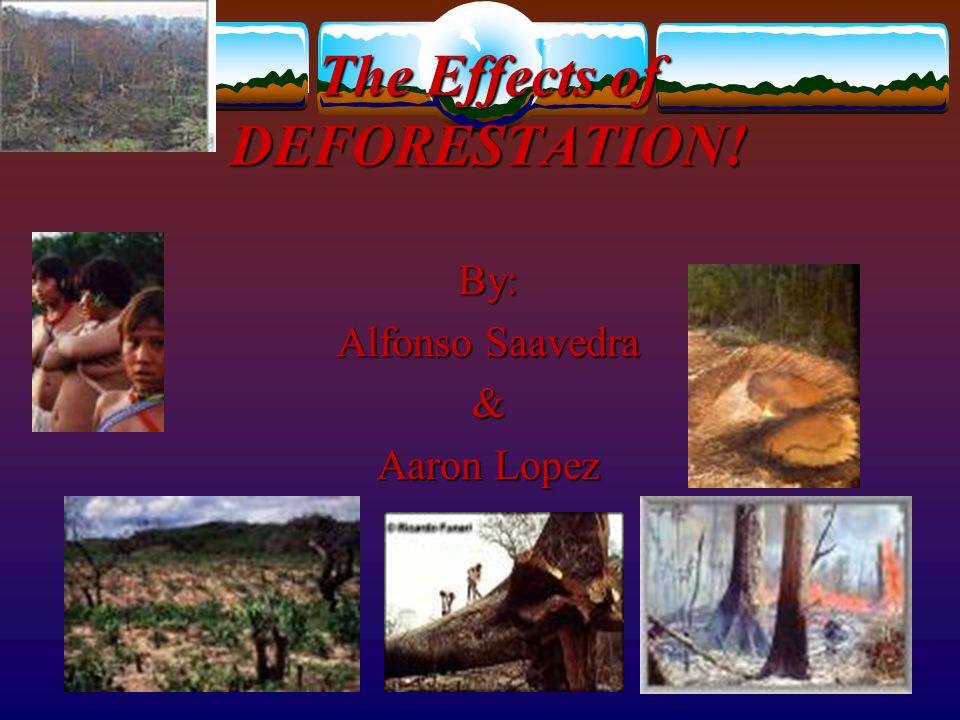 the numerous effects of deforestation on the environment Tropical deforestation is the 2 nd biggest contributor to climate change we will share with you some deforestation facts and statistics, to show you how it affects our environment and how we can help stop it.