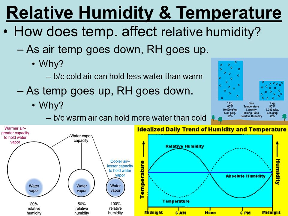 how does a temperature affect the How does increasing temperature affect bacterial growth for example if the maximum tolerable temperature of  effect on growth then reducing temperature.