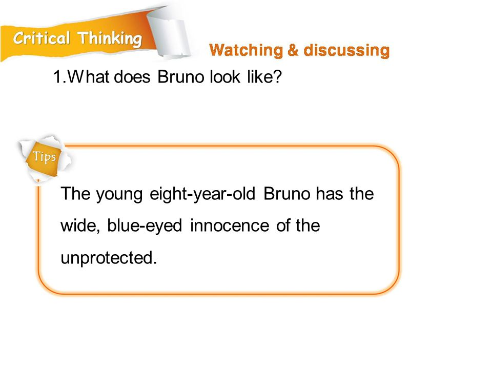 1.What does Bruno look like