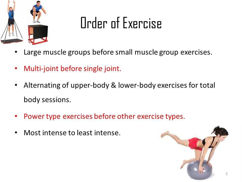 Designing Exercise Programs: *Layout *Muscle Groups ...