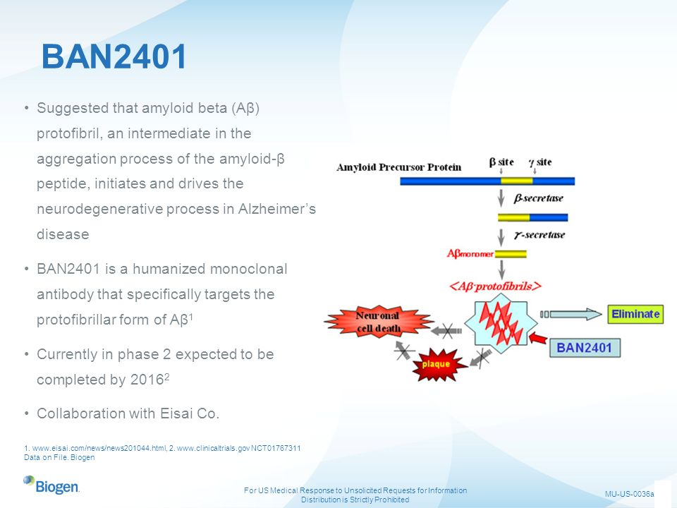 BAN2401