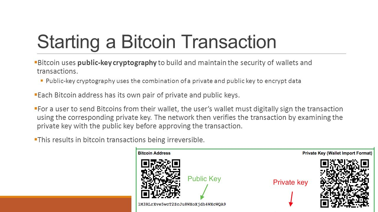 how to get bitcoin private key